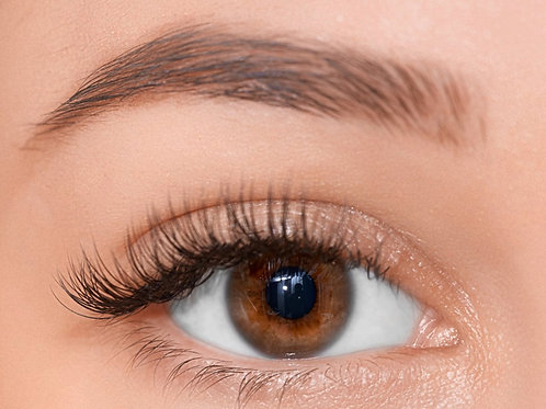 Online Lash and Brow Tint and Shape Course