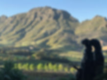 Africa Winelands (2).jpg