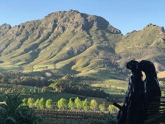Africa Winelands (2).jpg