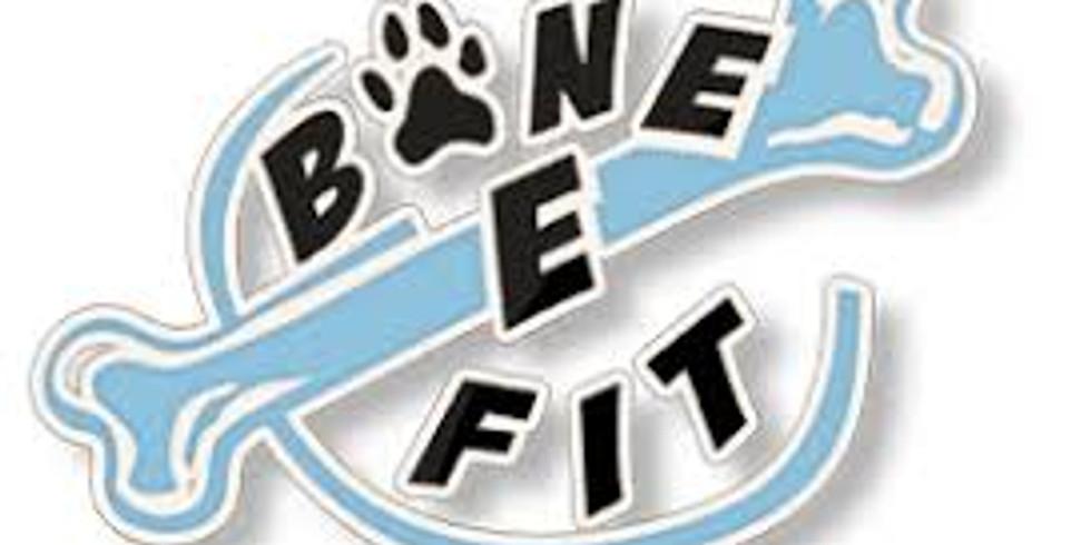 Bone-E-Fit