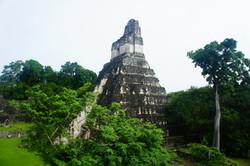Tikal,Guatemala