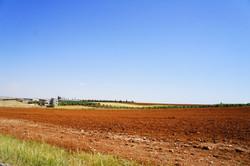 Jordan countryside