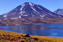 Laguna Miscanti,desert d'Atacama