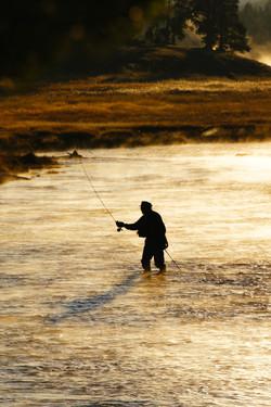 fisherman Yellowstone