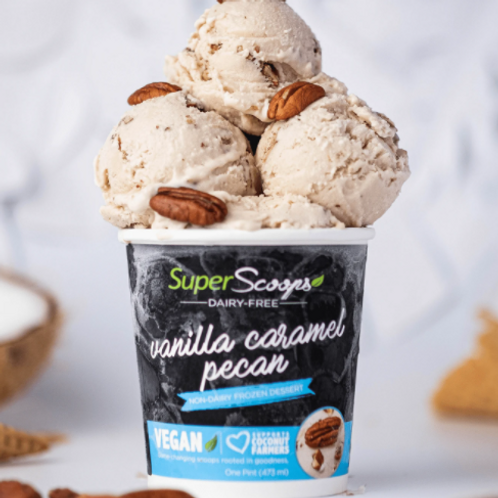 Vanilla Caramel Pecan Vegan Ice Cream  Mini Cup