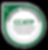 digital badge.png