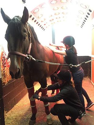 Massaging Je T'aime.JPG