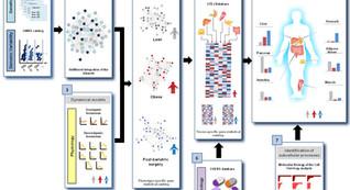 New Preprint on Cellular Atlas of Obesity