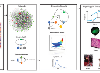 Systems Biology Primer