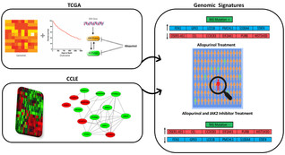 Accepted Paper in Molecular Oncology