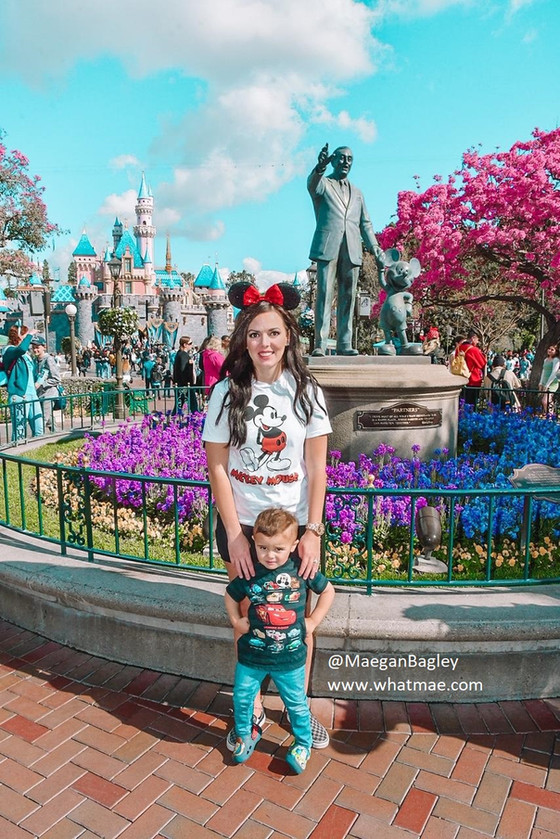 We became Disneyland Annual Passport holders on a whim & went every day for 2 months.  Here is m