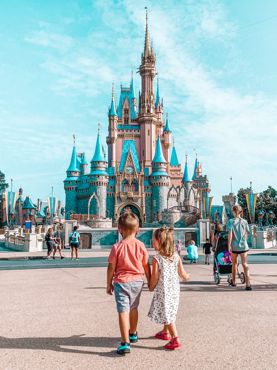 We went to Disney World during Covid.  It's safer than visiting your local Walmart.