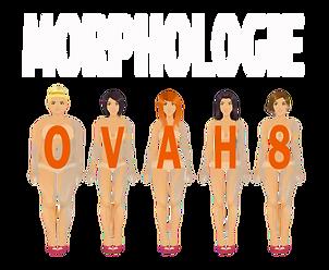 look et lumière - morphologie