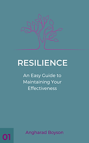 Copy of Resilience1-2.png