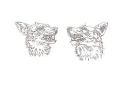 Two_Wolfs.jpg