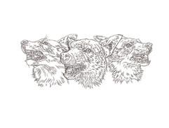 Three_Wolfs_Bw.jpg