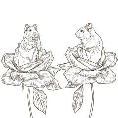 Hamster_Roses.jpg