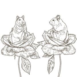 Hamster Roses