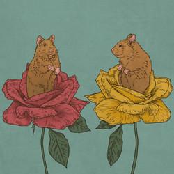 Hamster_Roses