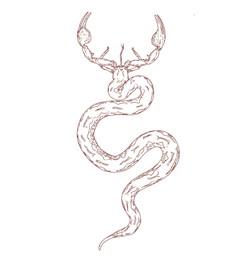 scorpion snake.jpg