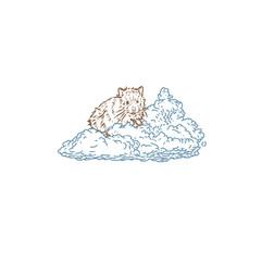 Cloud hamster 3.jpg