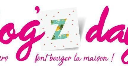 BLOG'Z'DAY chez ZODIO !!