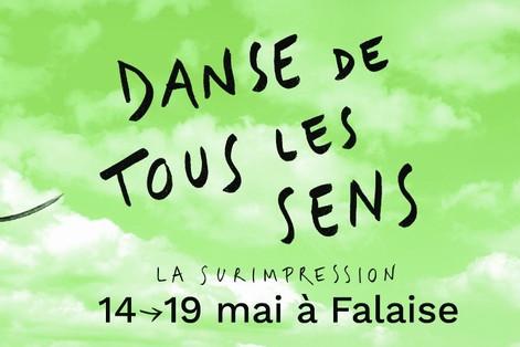 Festival Danse de tous les sens