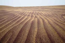 Namib Red Sand