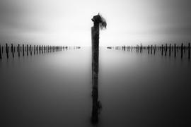 Solitude Marine