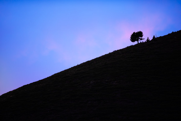 Alone at Sunset