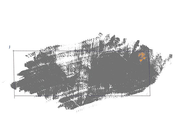 Grothaus_Linguistics image col.jpg