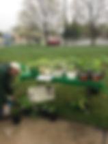 plant sale 1.jpg