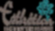 Esthetica_logo-2013_300.png