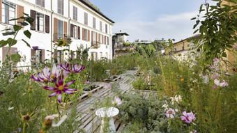 PIUARCH | Garden Among Courtyards | Terra Viva Conference 03.10.2015