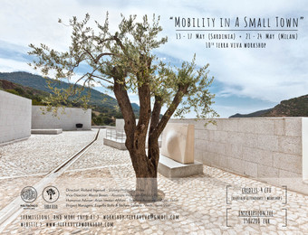 """""""MOBILITY IN A SMALL TOWN"""" 