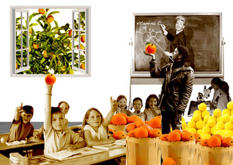 """""""Frutta Urbana"""" 