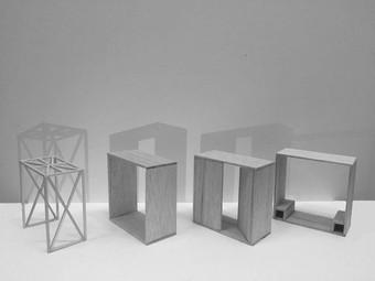 Final Outputs | TerraViva Workshop n°1 | AgriShelter V | Models | October 2018