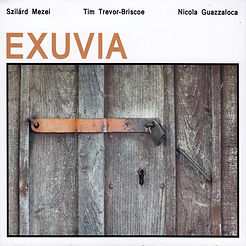 03 Exuvia (FMR Records).jpg