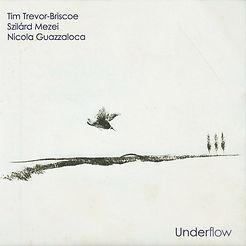 Underflow (Leo Records).jpg