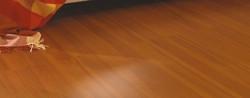 pisos-de-madera-1017