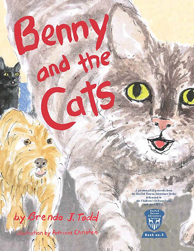 Benny and the Cats cover alt v4b.jpg