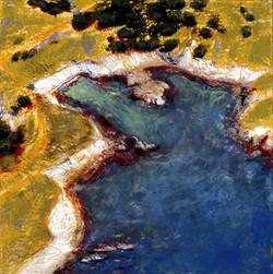 Gerstle Cove, Aerial