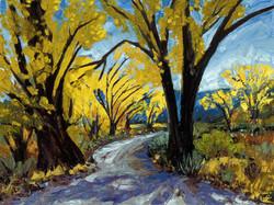 Antelope Valley Cottonwoods