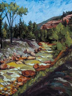 Uncompahgre River - Summer