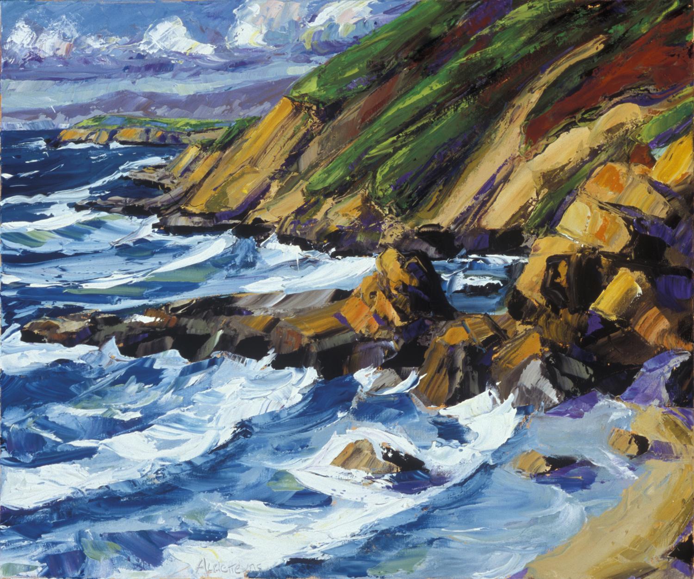 Bodega Head Beach