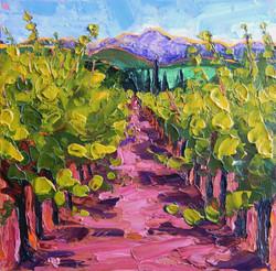 Windsor Vineyards