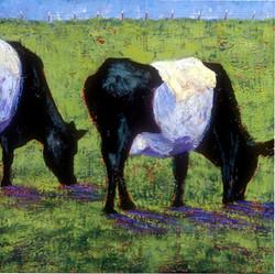 Oreo Cows