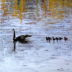 Laguna Geese