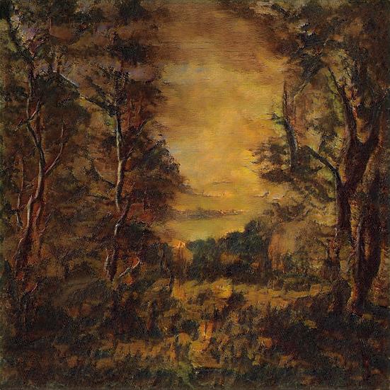 Awakening of the Sun