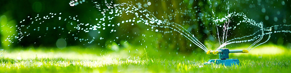 Green lawn being watered